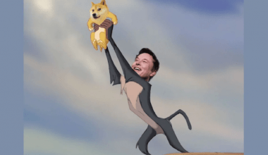 """Capture Elon Musk tweeted """"Doge"""", Dogecoin price rose by 50 percent."""