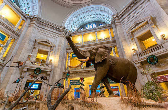 Top-Museums-In-Africa
